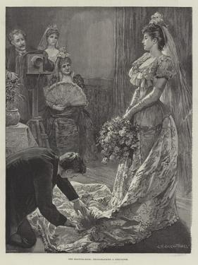 The Drawing-Room, Photographing a Debutante by Edward Frederick Brewtnall