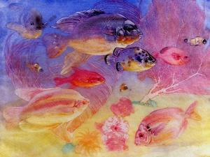 Angel Fish by Edward Julius Detmold