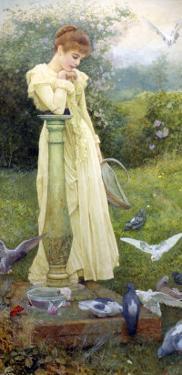 Feeding the Doves by Edward Killingworth Johnson