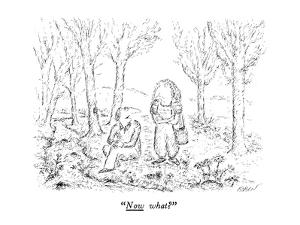 """Now what?"" - New Yorker Cartoon by Edward Koren"