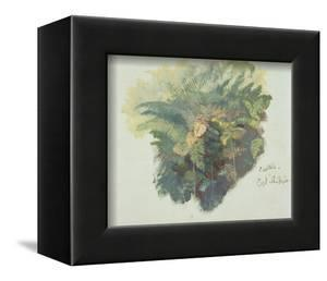 A Study of Ferns, Citivella, 1842, (Oil on Gray Wove Paper) by Edward Lear