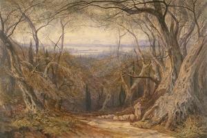 Corfu, 1871 by Edward Lear