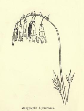 Manypeeplia Upsidownia by Edward Lear
