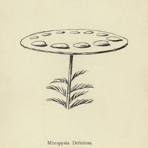 Minspysia Deliciosa by Edward Lear