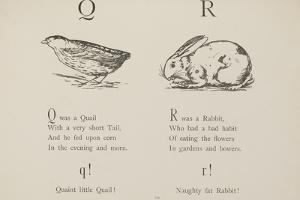 Quail and Rabbit Illustrations and Verse From Nonsense Alphabets by Edward Lear. by Edward Lear