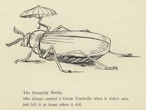The Bountiful Beetle by Edward Lear