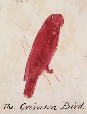 The Crimson Bird by Edward Lear