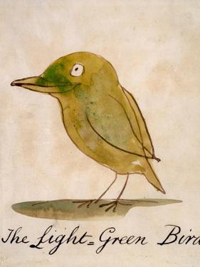 The Light Green Bird, from Sixteen Drawings of Comic Birds by Edward Lear