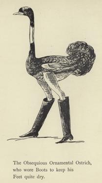 The Obsequious Ornamental Ostrich by Edward Lear