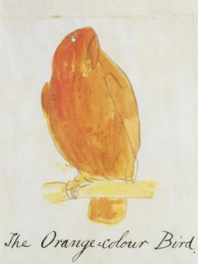"""The Orange Colour Bird, from """"Sixteen Drawings of Comic Birds"""" by Edward Lear"""