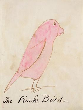The Pink Bird, from 'sixteen Drawings of Comic Birds' by Edward Lear