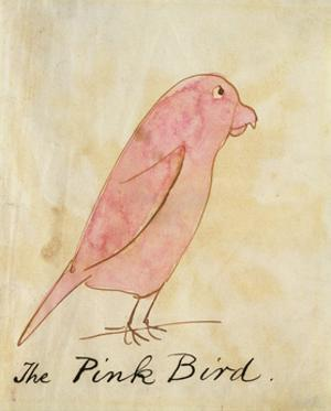 The Pink Bird by Edward Lear