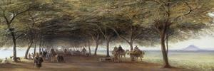 The Pyramids Road, Gizeh, 1873 by Edward Lear