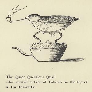 The Queer Querulous Quail by Edward Lear