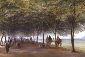 The Road to the Pyramids at Giza, C1873 by Edward Lear
