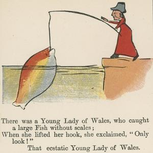 There Was a Young Lady of Wales, Who Caught a Large Fish Without Scales by Edward Lear