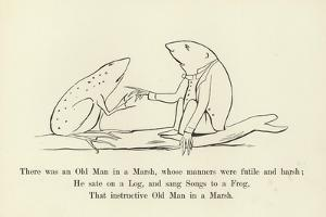 There Was an Old Man in a Marsh, Whose Manners Were Futile and Harsh by Edward Lear