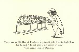 There Was an Old Man of Dumbree, Who Taught Little Owls to Drink Tea by Edward Lear