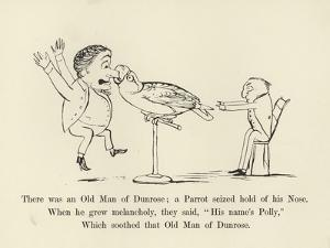 There Was an Old Man of Dunrose; a Parrot Seized Hold of His Nose by Edward Lear