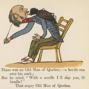 There Was an Old Man of Quebec- a Beetle Ran over His Neck by Edward Lear