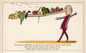 There was an Old Man on Whose Nose Most Birds of the Air Could Repose by Edward Lear
