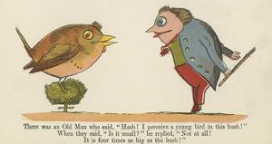 There Was an Old Man Who Said, 'Hush! I Perceive a Young Bird in This Bush!' by Edward Lear