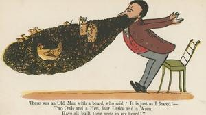 There Was an Old Man with a Beard, Who Said, 'It Is Just as I Feared!' by Edward Lear