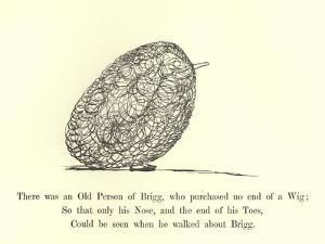 There Was an Old Person of Brigg, Who Purchased No End of a Wig by Edward Lear