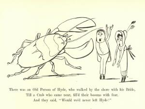 There Was an Old Person of Hyde, Who Walked by the Shore with His Bride by Edward Lear