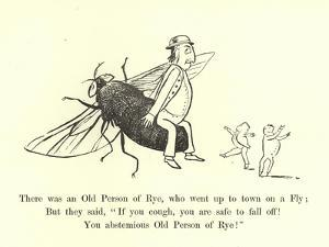 There Was an Old Person of Rye, Who Went Up to Town on a Fly by Edward Lear