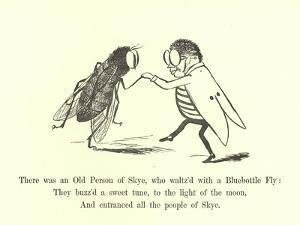 There Was an Old Person of Skye, Who Waltz'D with a Bluebottle Fly by Edward Lear