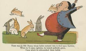 There Was an Old Person Whose Habits Induced Him to Feed Upon Rabbits by Edward Lear