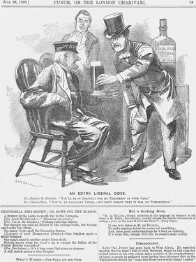 An Extra Liberal Dose, 1885 by Edward Linley Sambourne