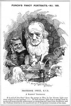 Richard Owen, English Zoologist, 1884 by Edward Linley Sambourne