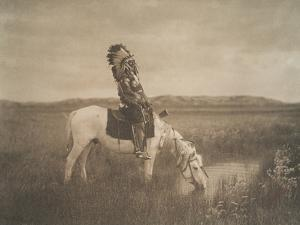 An Oasis In The Badlands, Oglala, 1905 by Edward Sheriff Curtis