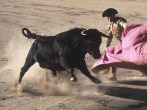 Matador with Pink Cape and Bull, Mexico by Edward Slater
