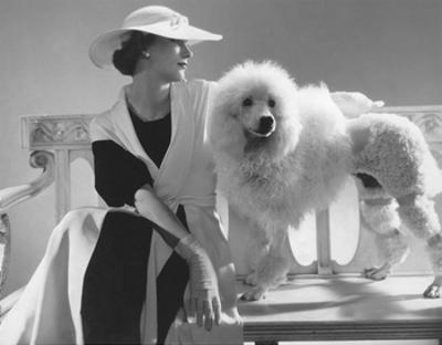 Vogue - July 1934 - Isabel Johnson Sitting with Poodle by Edward Steichen