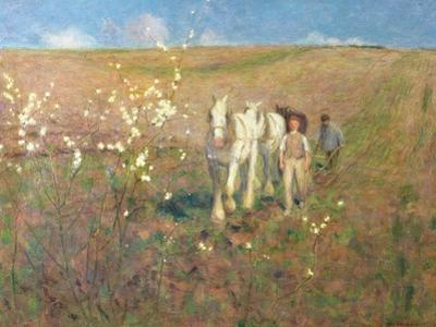 Ploughing, Early Spring