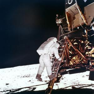 Edwin Buzz Aldrin Descends the Steps of the Lunar Module Ladder to Walk on the Moon, 1969