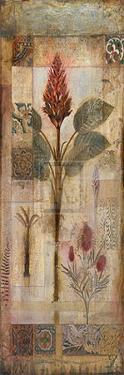Mystique Opus I by Edwin Douglas