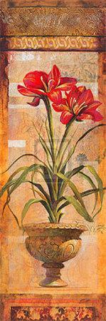 Rojo Botanicals IV