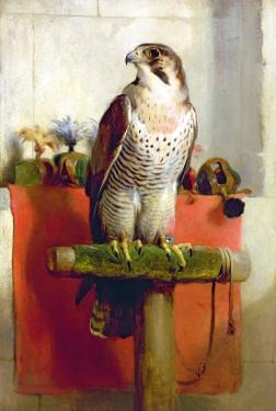 Falcon, 1837 by Edwin Henry Landseer
