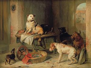 Jack in Office, c.1833 by Edwin Henry Landseer