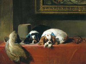 King Charles Spaniels ('The Cavalier's Pets') by Edwin Henry Landseer
