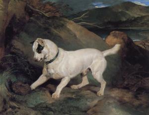 Portrait of a Terrier by Edwin Henry Landseer