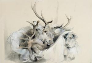 Stags' Heads and Dog, 1857 (Pencil on Paper) by Edwin Henry Landseer