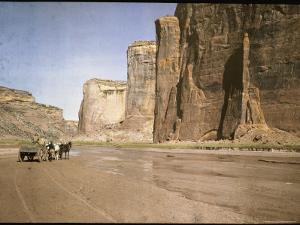 Canyon Del Muerto is One of Many on the Chinle Wash by Edwin L. Wisherd