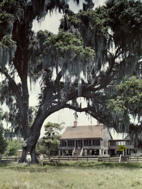 Two Men Stand on the Lawn of What Was Once a Sugar Plantation by Edwin L. Wisherd