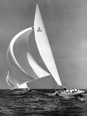 Indian Harbor Regatta by Edwin Levick