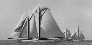 Schooner Race by Edwin Levick